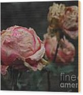 Pink Roses In The First Snow I V Wood Print