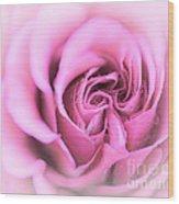 Pinkness Wood Print
