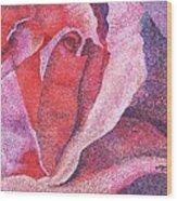 Pinkrose#5-2 Wood Print