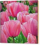 Pinks My Color Wood Print