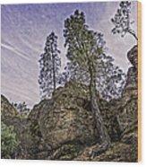 Pinnacles And Trees Wood Print