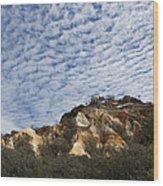 Pinnacles Of Fraser Island Wood Print by Linda Lees