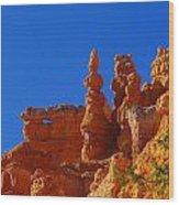 Pinnacles Of Red Rock Wood Print