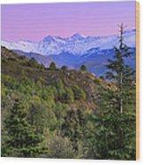 Pinsapar At Sierra Nevada Wood Print