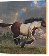 Pinto Mustang Galloping Wood Print