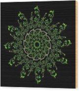Pinwheel I Wood Print