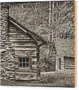 Pioneer Cabin And Shed In Cades Cove E227 Wood Print