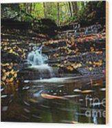 Pipestem Falls Wood Print