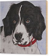 Pippy The Springer Spaniel Wood Print