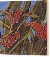 Pismo Monarchs Wood Print