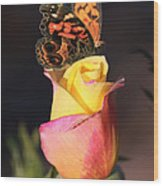 Piz535 Wood Print