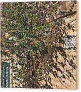 Pjazza In Mdina Wood Print