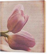 Places In Our Hearts - Vintage Art By Jordan Blackstone Wood Print