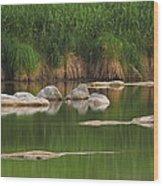 Llano River 2am-106459 Wood Print