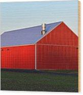 Plain Jane Red Barn Wood Print