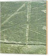 Plains Of Nazca - Spider Wood Print