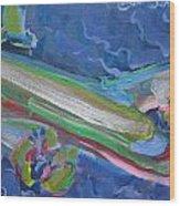 Plane Colorful Wood Print