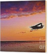 Plane Pass At Sunset Wood Print