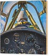 Plane Ride Wood Print