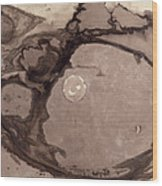 Planets Wood Print by Victor Hugo