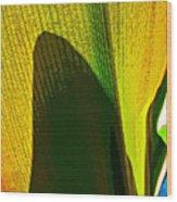 Plant Art 1 Wood Print