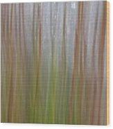 Plant Stem Sweep Wood Print