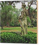 Plantation Garden New Orleans  Wood Print