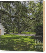 Plantation Grounds Wood Print