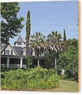 Plantation Home At Magnolia Plantation Wood Print
