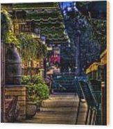 Plants And Boardwalk V Wood Print