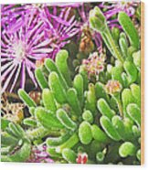 Plants Flowers Wood Print