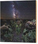 Plants Vs Milky Way Wood Print