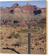 Plateau Point Grand Canyon Wood Print