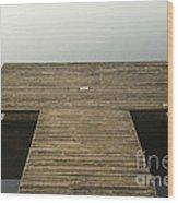 Platform 33 Wood Print by Anne Gilbert