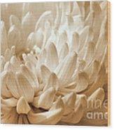 Platinum Mum Wood Print