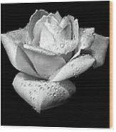 Platinum Rose Flower Wood Print