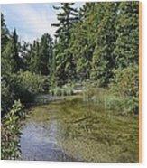 Platte River Beauty Wood Print