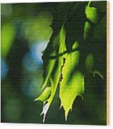 Play Of Light On Maple Leaves Wood Print