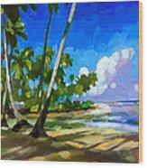 Playa Bonita Wood Print by Douglas Simonson