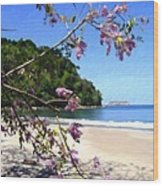 Playa Espadillia Sur Manuel Antonio National Park Costa Rica Wood Print