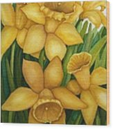 Playful Daffodils Wood Print by Vikki Wicks