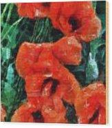 Playful Poppies 5 Wood Print
