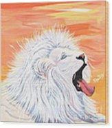 Playful White Lion Wood Print