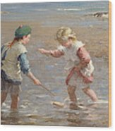 Playing In The Shallows Wood Print by William Marshall Brown
