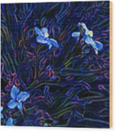 Playing With Blue Flowers Wood Print
