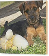 Playmates - Puppy With Toy Wood Print