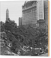 Plaza Hotel From Central Park Wood Print