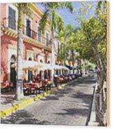 Plaza Machado Pulmonia Wood Print