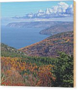 Pleasant Bay Wood Print by Janet Ashworth