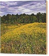 Pleasant Meadow Foreboding Sky Wood Print
